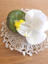 オデミシュ|コザ(蚕のまゆ)のシルクブローチ:ホワイト×きなり