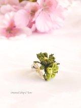 一番人気☆シルクイーネオヤ リング|3つ花